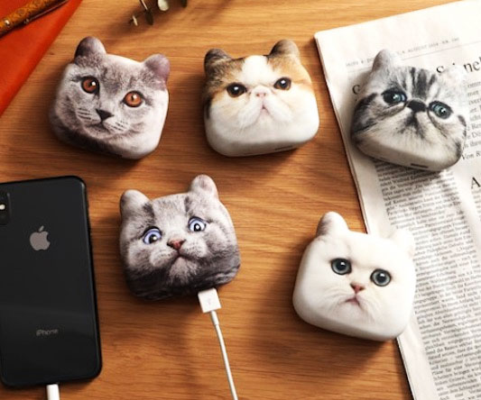 Cat Head Phone Charger