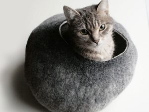 Fuzzy Bubble Cat Bed 1