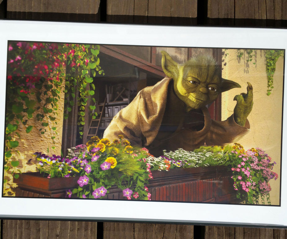 Out Of Character Star Wars Prints 1