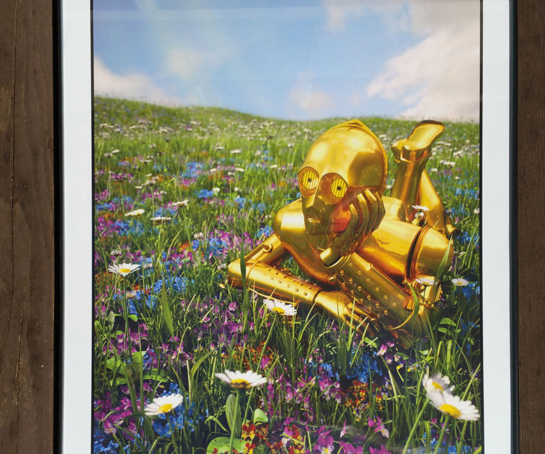 Out Of Character Star Wars Prints 2