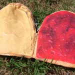 Peanut Butter And Jelly Wallet 1