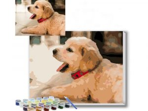 Personalized Pet Paint By Numbers Kit