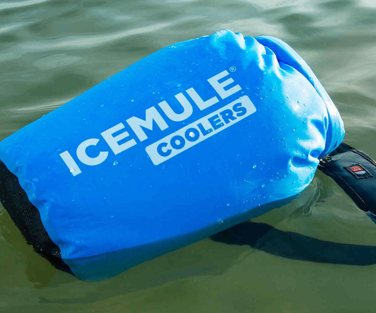 Portable Backpack Cooler 2