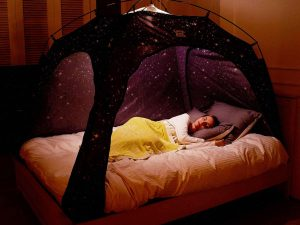 Privacy Starry Bed Tent 1