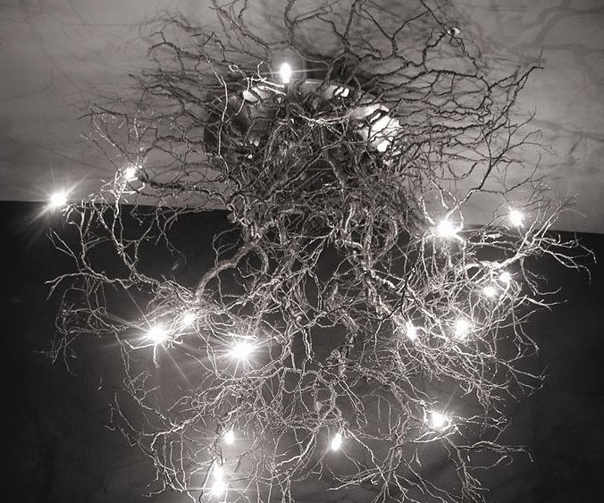 Tree Roots Ceiling Lamp 1