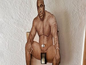 Wood On A Light Switch Cover